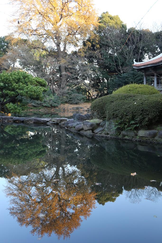 新宿御苑日本庭園1-2