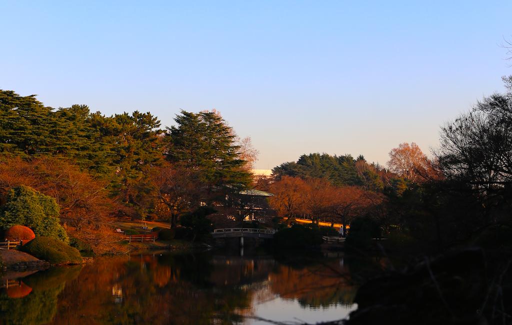 新宿御苑日本庭園4