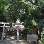 世田谷八幡宮 | 鳥居をくぐると森の中に鮮やかな社殿が佇んでいました