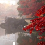 小石川後楽園 | 中華風の回遊庭園に映える紅の葉